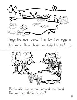 Emergent Reader Book: The Pond