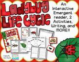 Ladybug Life Cycle {K/2} #kinderfriends