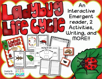 Ladybug Life Cycle {K/2} #kinderfriends