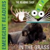 Animals Reading Book