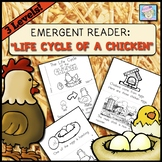 Life Cycle of a Chicken Booklet   Science Kindergarten 1st Grade Emergent Reader