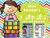 Emergent Reader (Mini Book) - Senses