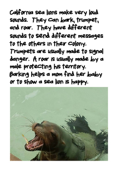 Emergent Reader - Non-Fiction - CA Sea Lions