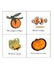 Emergent Reader - Orange Book