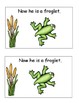 Frog Life Cycle Emergent Reader and Cut and Paste Activiti