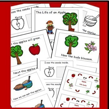 Apple Life Cycle Emergent Reader, Apple Activities / Fall Activities Apple Theme
