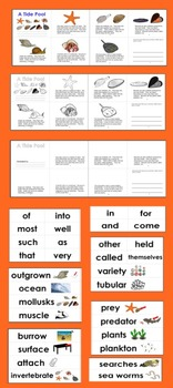 Tide Pools Differentiated Readers - 3 Levels + Illustrated Word Wall