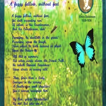 Emily Dickinson Poem A Fuzzy Fellow...