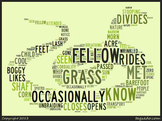 """Emily Dickinson's """"A Narrow Fellow in the Grass"""" Word Cluster"""