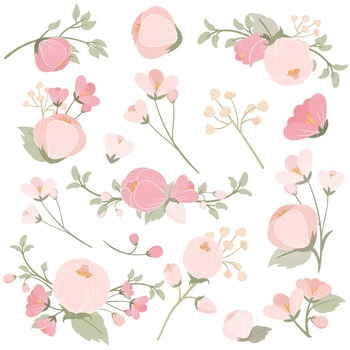 Emma Collection Floral Clipart & Vectors in Soft Pink - Flower Clip Art, Flowers