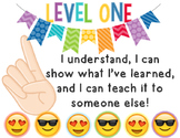 Emoji Levels of Understandings