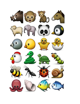 Emoji Reads~Get Kids Talking About Books~Great for Middle Years