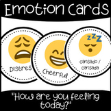 Feelings and Emotions Cards (English and Spanish)