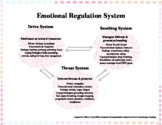 Emotion Regulation System