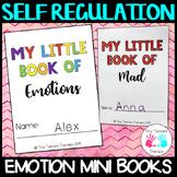 Emotion and coping skills mini book - Self regulation tool