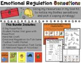 Emotional Regulation Sensations