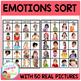 Emotions Feelings Sorting