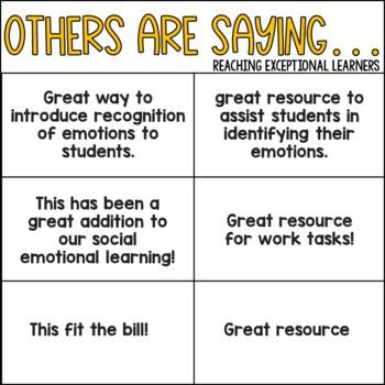 Emotions File Folder Activity- Special Education