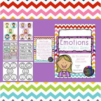 Emotions File Folder Matching Game