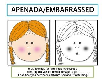 Emotions/ Las Emociones (Spanish and English)