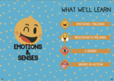 Emotions & Senses (Theme Learning)
