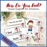 Preview: Emotions Visual Support (For Expressing and Understanding Feelings)