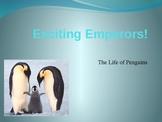 Emperor Penguin Powerpoint