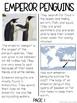 Emperor Penguin Reading Passage ::FREEBIE::