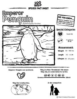Emperor Penguin -- 10 Resources -- Coloring Pages, Reading & Activities