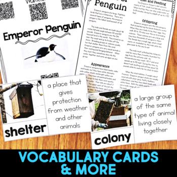Emperor Penguins: Informational Article, QR Code Research & Fact Sort