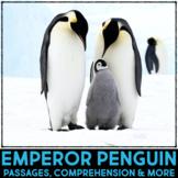 Emperor Penguins Informational Article & Comprehension Activities