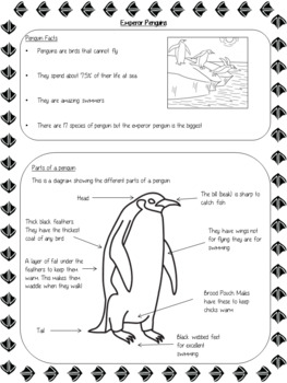 Emperor Penguins  -  PowerPoint and Worksheets