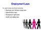 Employment Laws / Regulation - PPT & Worksheet - Business Studies