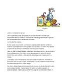 Spanish 2  Reading Comprehension   La Vida nos trae Sorpresas