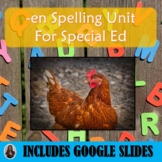 En Spelling Unit for Special Education with Lesson Plans