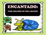 Encantado: Pink Dolphin of the Amazon - 4th grade Tri Folds + Activities