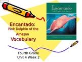 Encantado Vocabulary Powerpoint