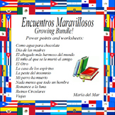 Encuentros Maravillosos (supplemental materials) Bundle