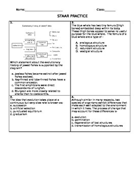 End of Course Review Questions