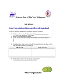 End of Year 5th grade science web quest