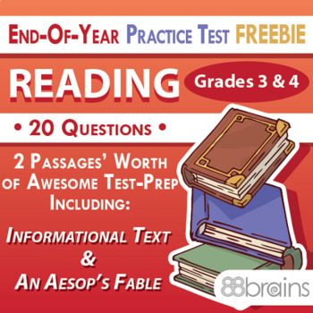 End of Year Practice Test: Reading Grades 3 & 4 FREEBIE