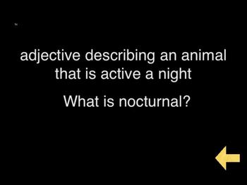 Trivia Jeopardy Game #3