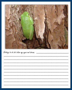 End of Year Wildlife Writing
