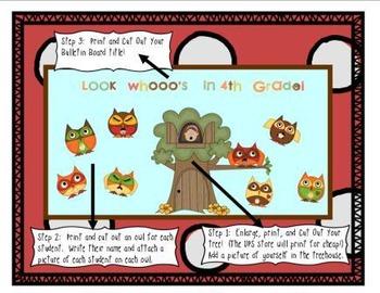 Back to School  Bulletin Board - OWLS!