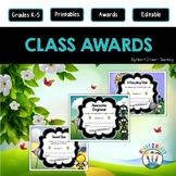 End of the Year Class Awards Lovable Bugs {EDITABLE}