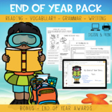 End of year - Summer Story - Activity Pack (Comprehension, Grammar, Vocabulary)