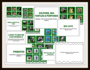 Endangered Animal Vocabulary Cards