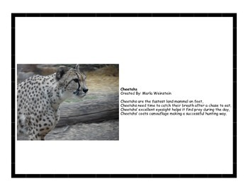 Endangered Animal Activity Pack