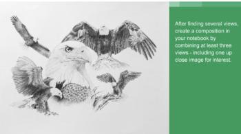 Endangered Animal Montage