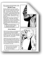 Endangered Animal Pages